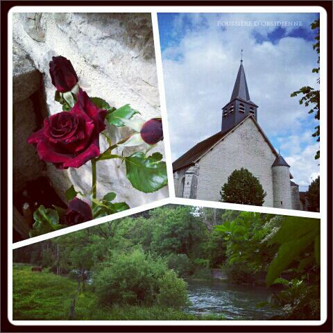 http://poussiereobsidienne.cowblog.fr/images/Imagesdarticles/25juin2012376-copie-2.jpg